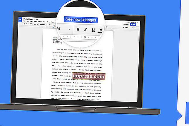 Cara Memasukkan Petikan Dengan Zotero & Google Docs
